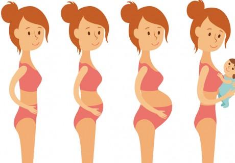 Wil je zwanger worden?